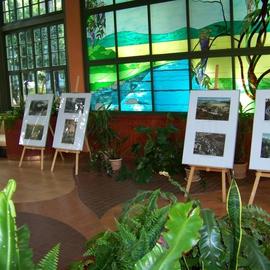 Galeria Dni Turystyki 2014