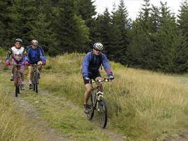 Trasa rowerowa w Górach Bystrzyckich