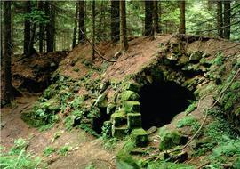 Ruiny fortu Wilhelma w Górach Bystrzyckich